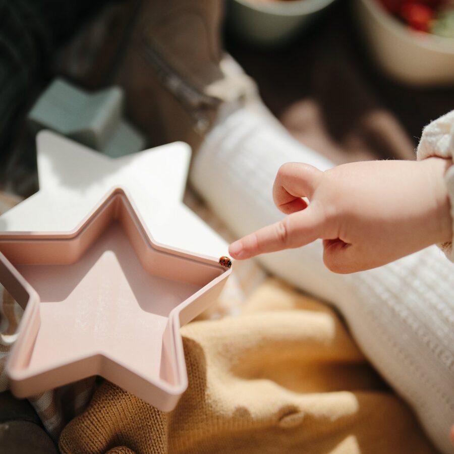 Mushie - Dažādu izmēru zvaigznes